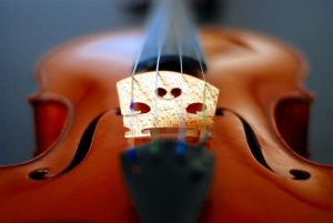 Opiniones de violin bridge para comprar On-line – El TOP 30
